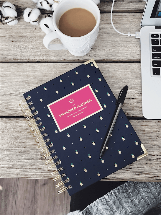 Navy and Gold Pineapple Daily Simplified Planner // Winter 2018 Favorite Products // Atlanta Lifestyle Blogger