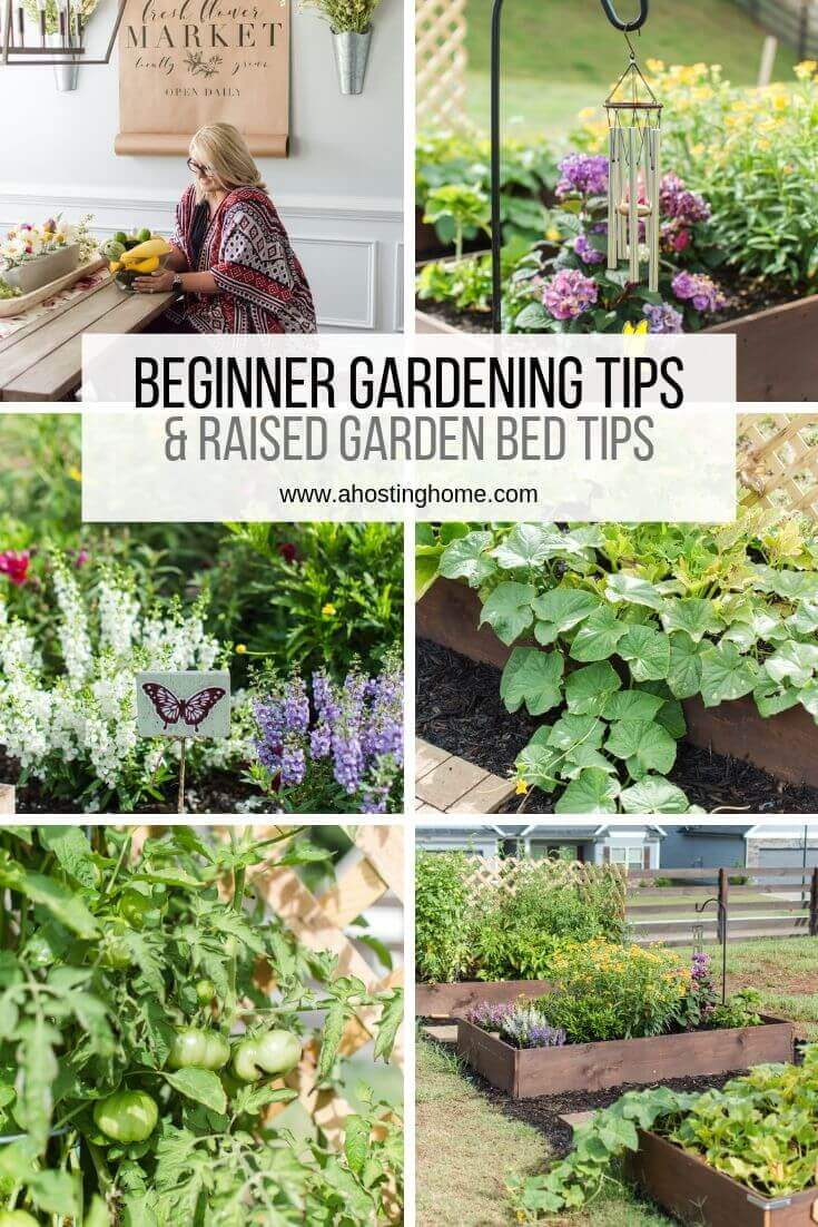 Our Beginner Gardening and Raised Garden Bed Tips / A Hosting Home Blog