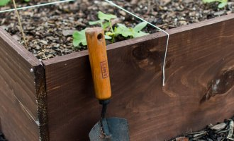 Planning and Planting Our Fall Garden / A Hosting Home Blog