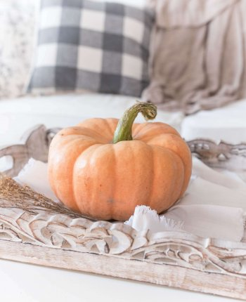 The Best of Fall Home Decor at TJ Maxx / A Hosting Home Blog
